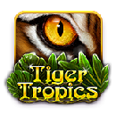 tiger tropic icon